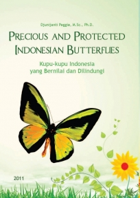 Precious and Protected Indonesian Butterflies